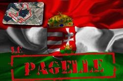 Pagelle Gp Ungheria