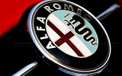 Alfa is back